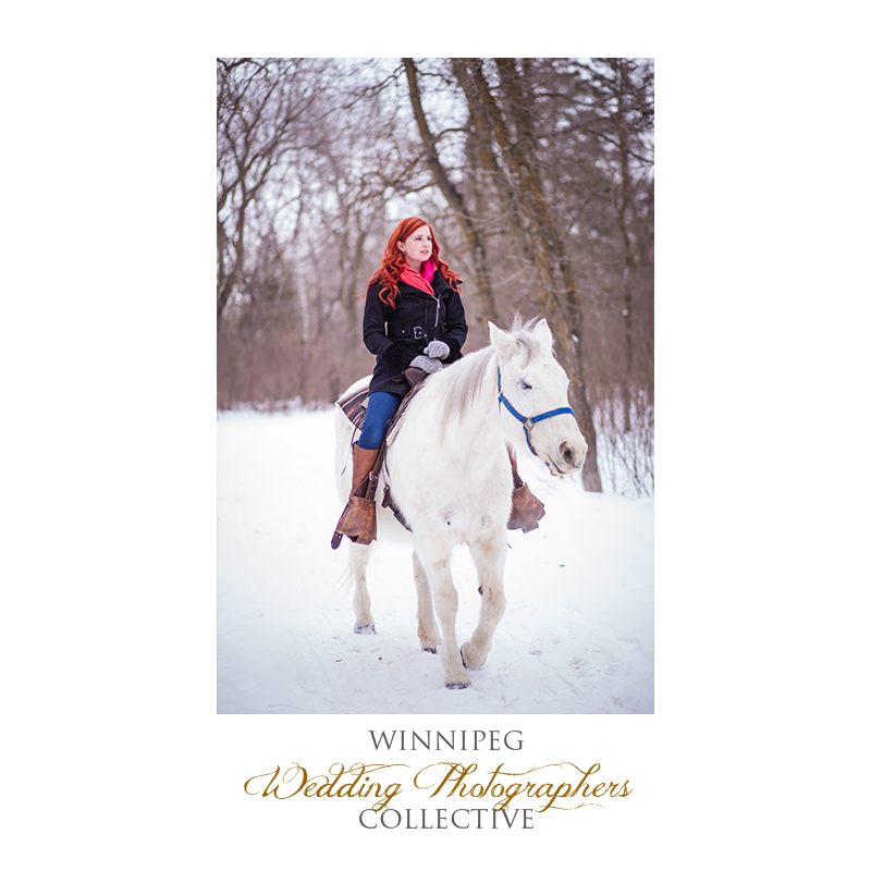 Winter Engagement with Horses005.jpg