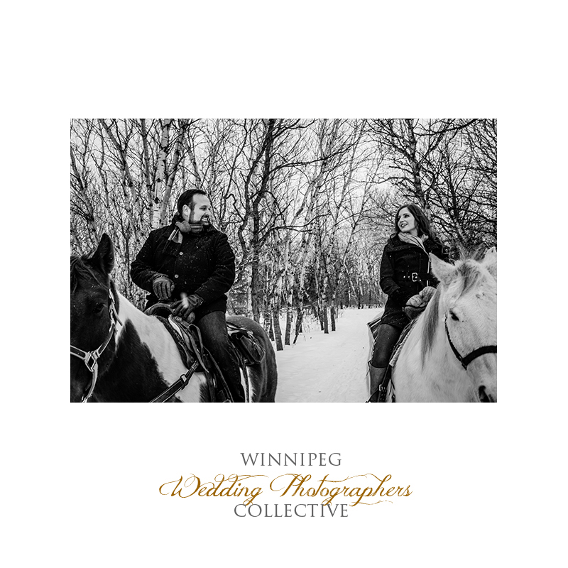 Winter Engagement with Horses008.jpg