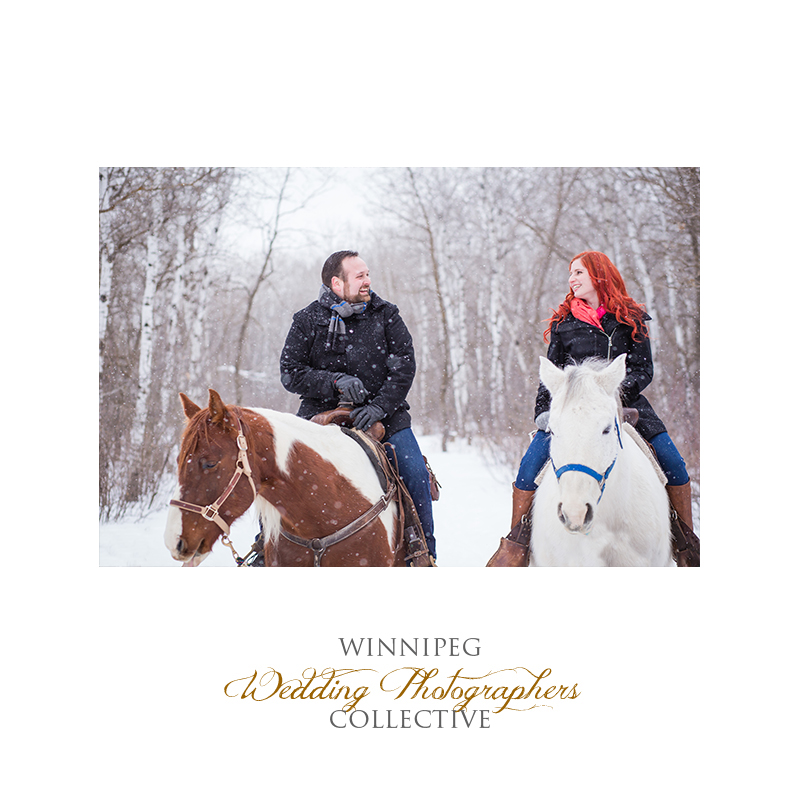 Winter Engagement with Horses009.jpg