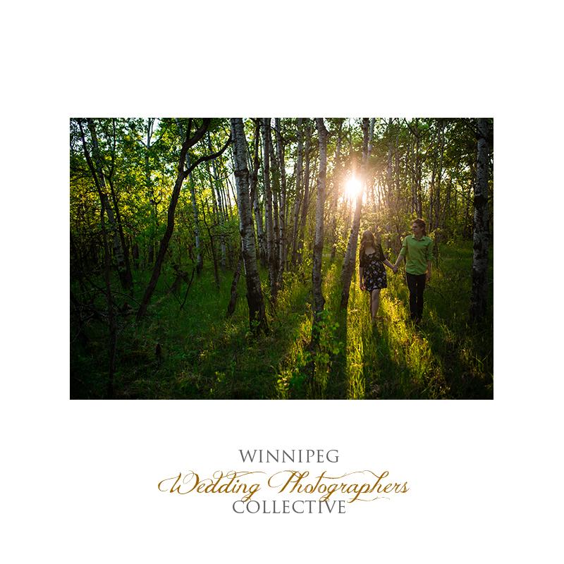 Sunset Deer Engagement Shoot14.jpg