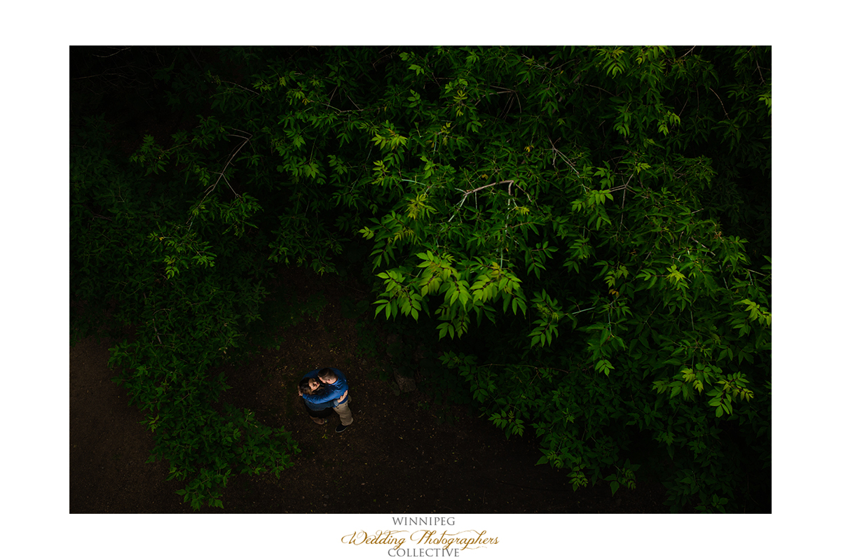 4 Forest Woods Natural Nature Engagement Engaged Winnipeg Tony.jpg
