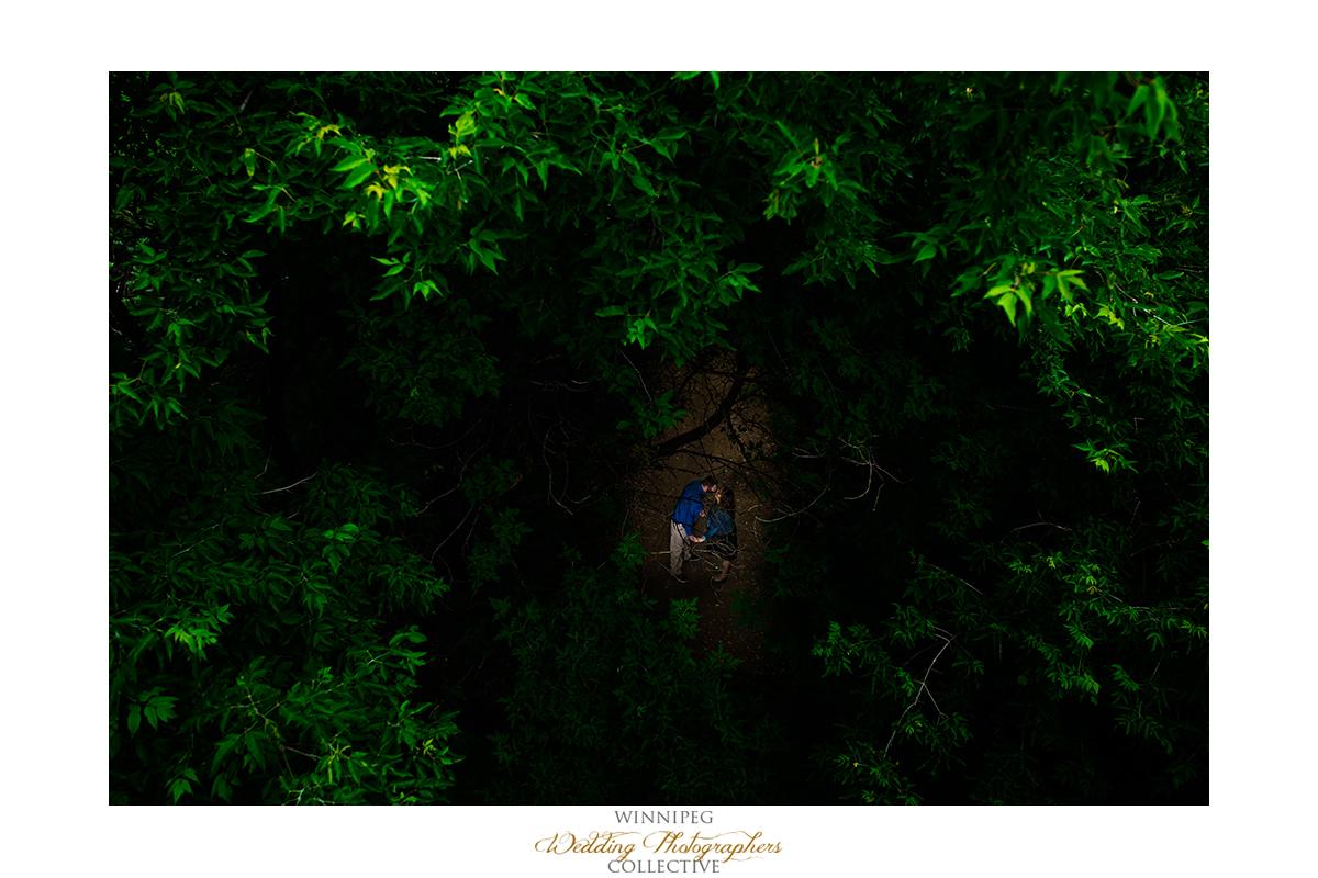 6 Forest Woods Natural Nature Engagement Engaged Winnipeg Tony.jpg