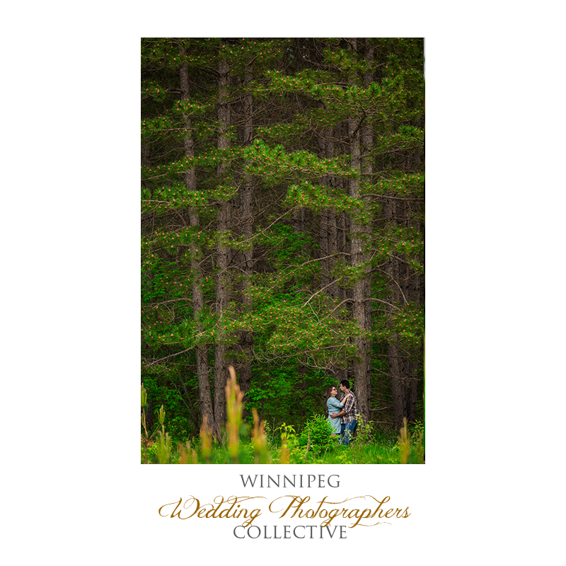 Engagement Shoot in Nature11.jpg