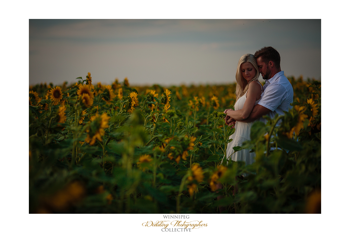 04_Farm Life Engagement Photos Wheat Sunflowers Field Sunset.jpg