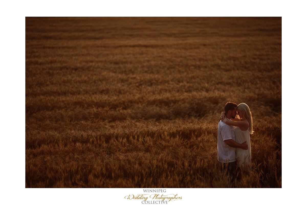 11_Farm Life Engagement Photos Wheat Sunflowers Field Sunset.jpg