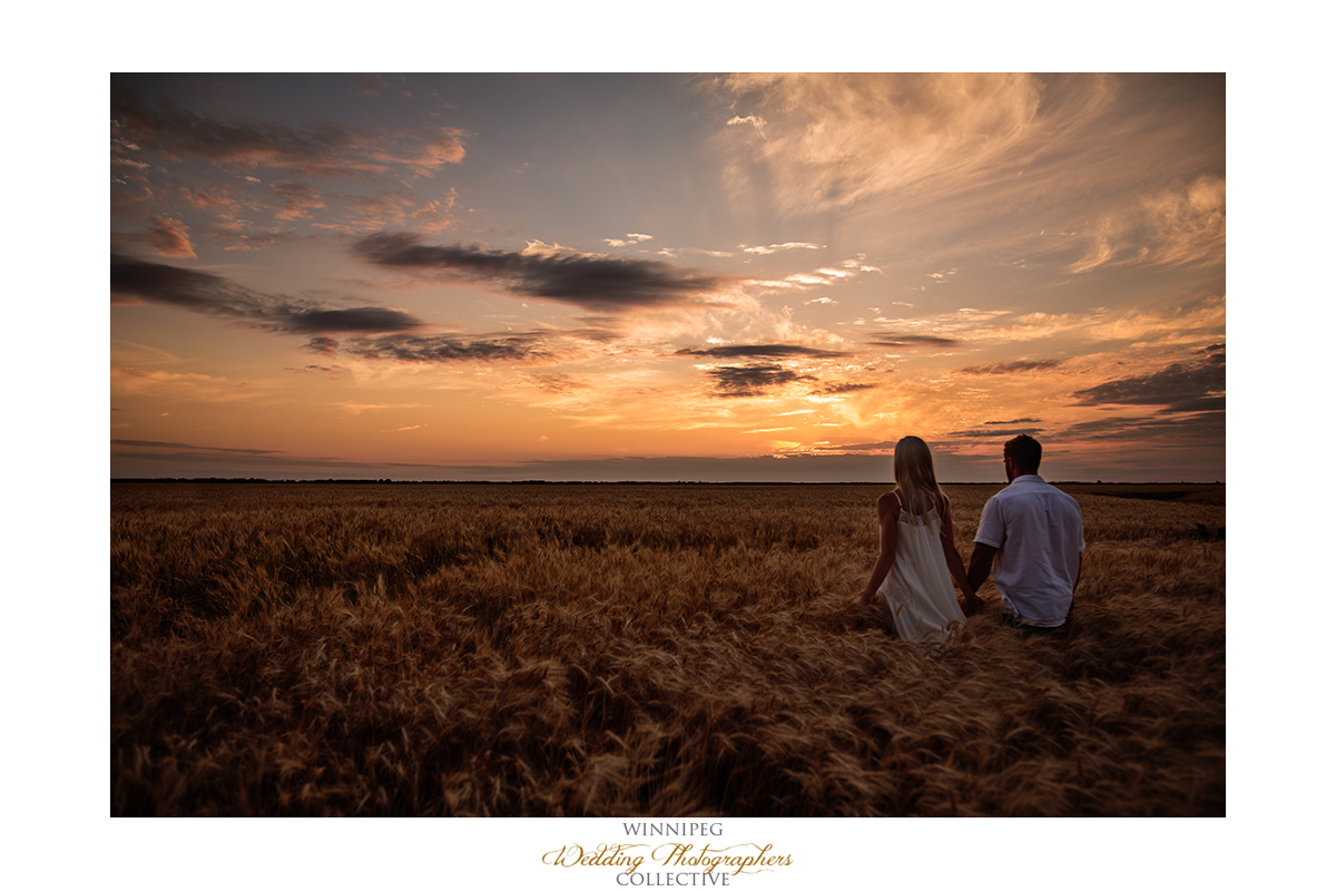 sunset engagement photos wheat field