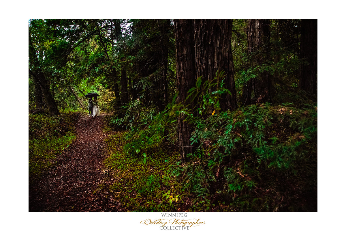 Big Sur California Rainy Wedding Elope Elopement Fit_014.jpg