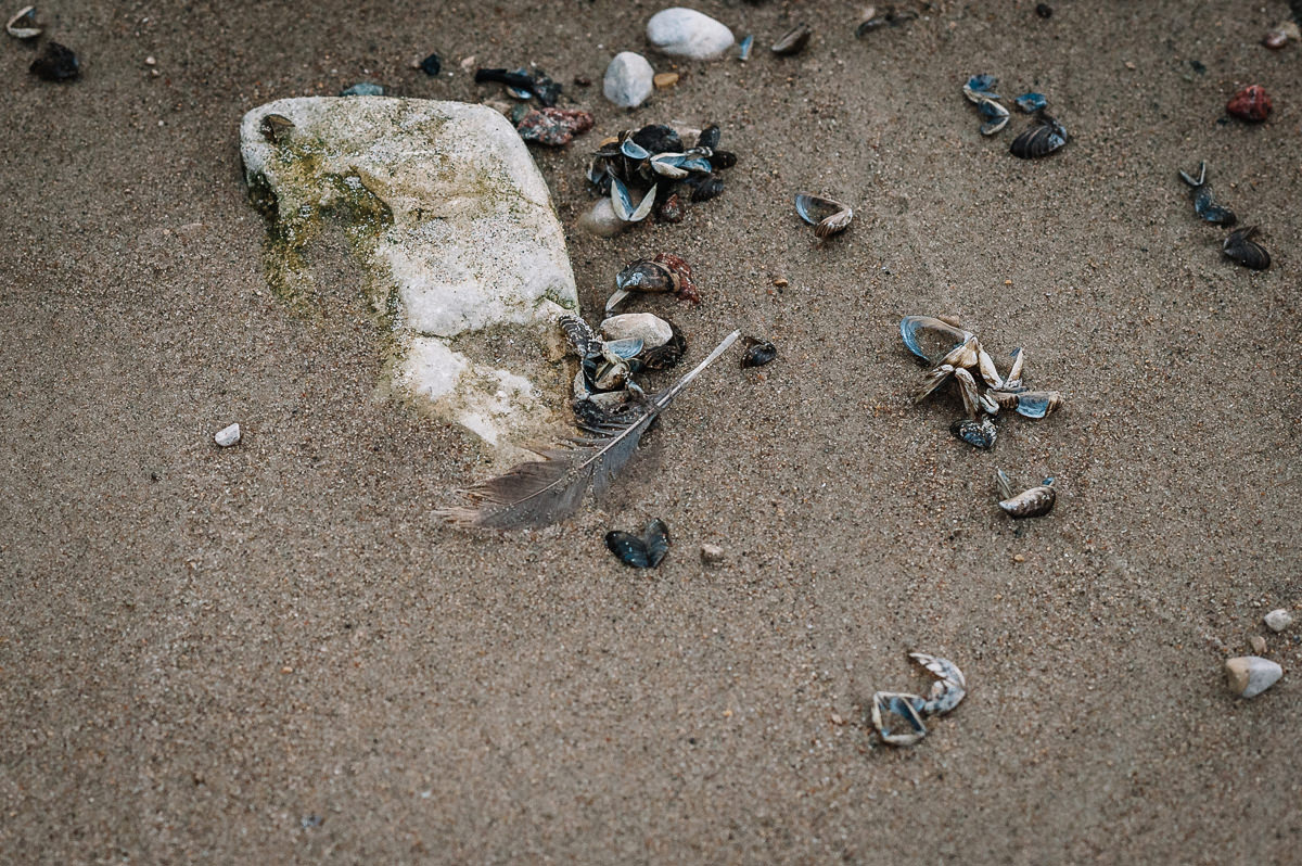0003-lakeshore-manitoba-engagement-photos-brittany-david.jpg