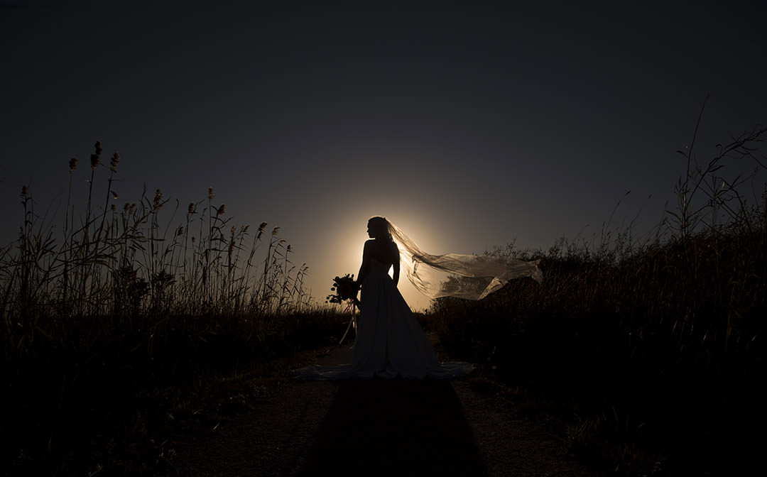 Bride with veil silhouette  Photo by Jensen
