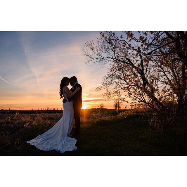 An amazing start to the 2019 season with these two beauties 🖤. Congratulations @andiij_  and @livebig204 . . . . . #winnipegweddings #winnipegweddingphotographer #weddingsinwinnipeg #belovedstories #manitobaweddings  #loveandwildhearts #lookslikefilmweddings #junebugweddings #bridetrends #weddinginspiration #chasinglight #littlethingstheory #shotwithlove #featurepalette #peoplescreatives #artofvisuals #theknot #sisterphotogs #loverly #kinfolk #radlovestories