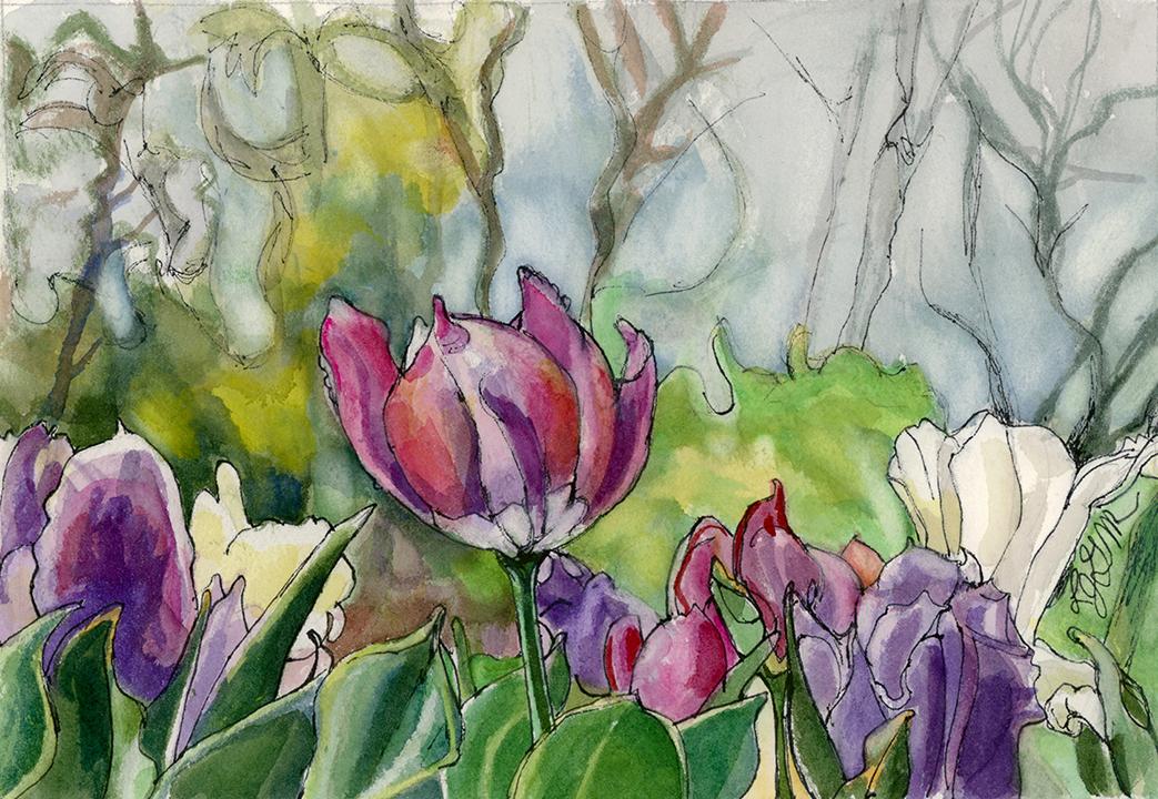 Tulips, Linda Green-Metzler