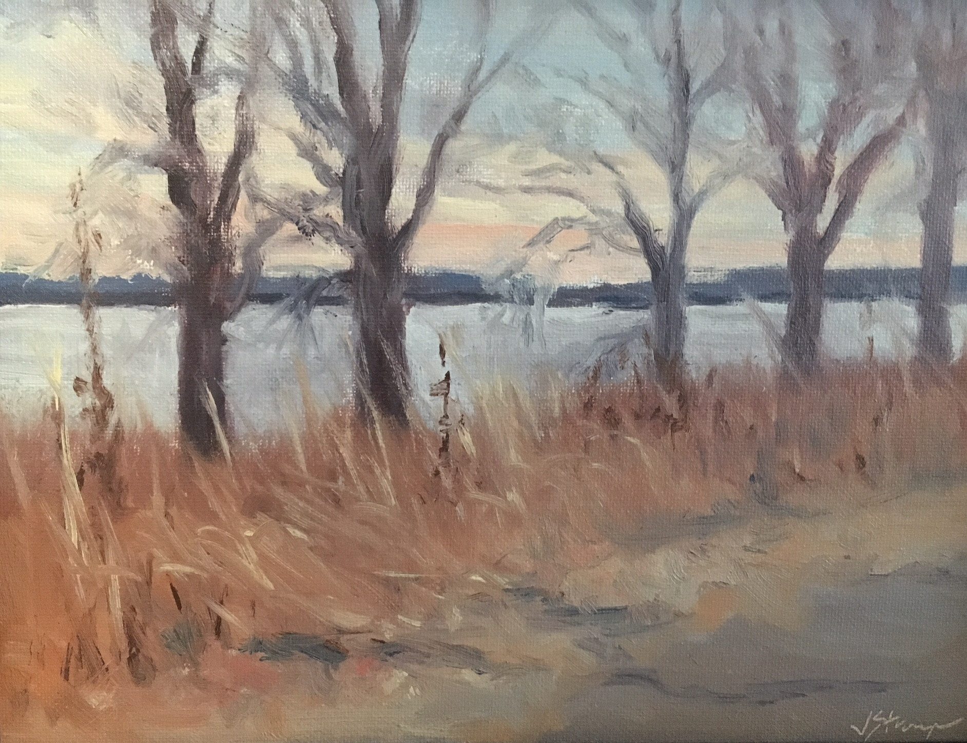 Riverlands in Winter, Judy Stroup