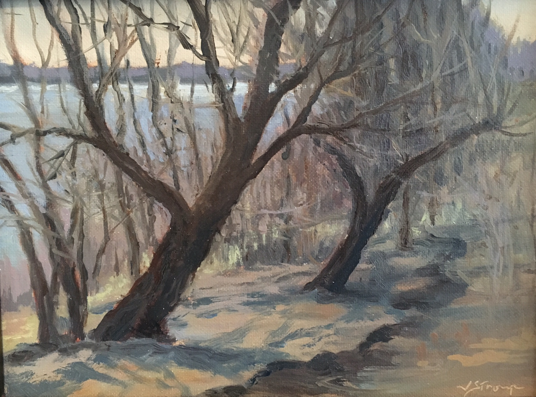 Judy Stroup, Flood Patterns