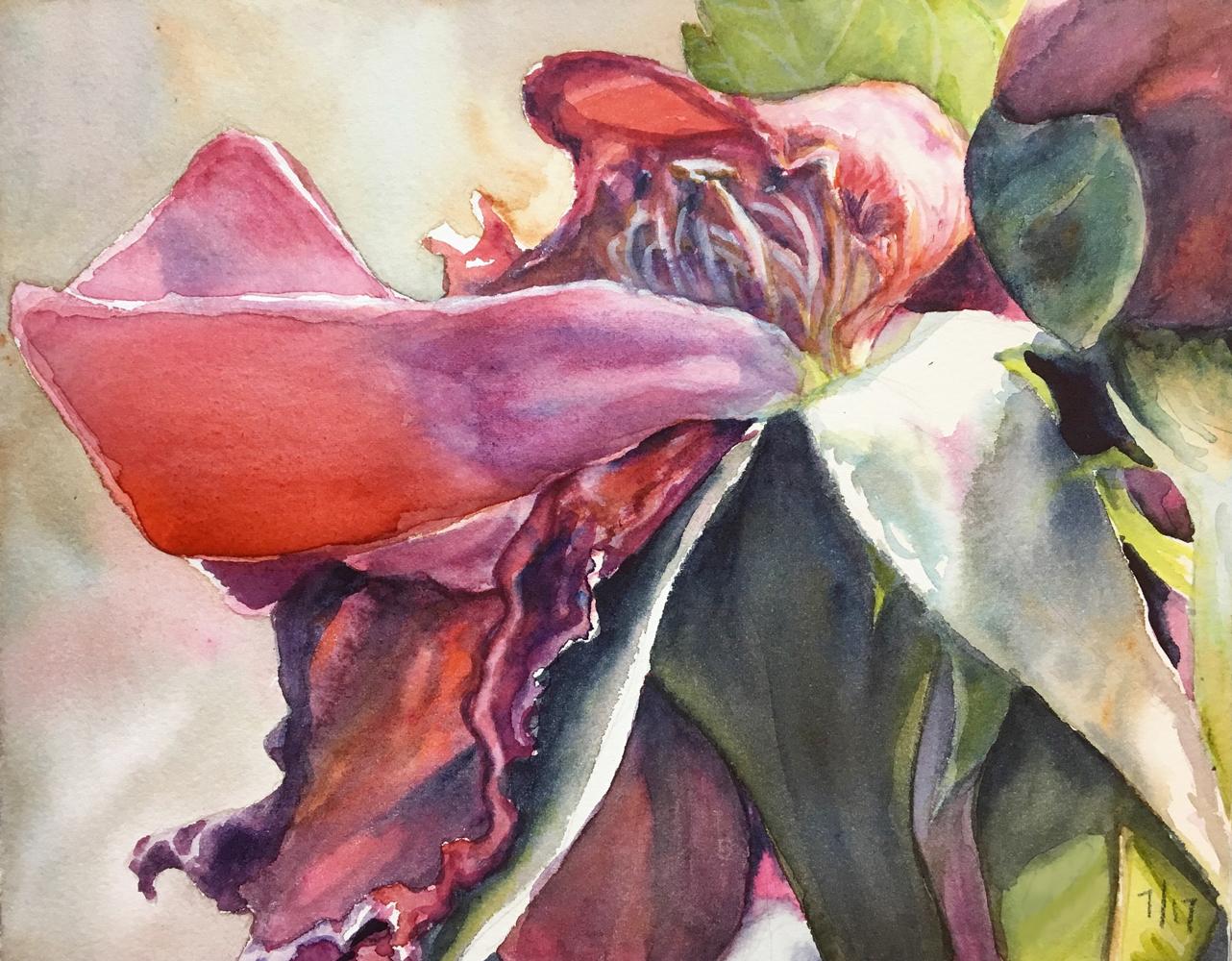 Erin Blumer, Roses Past