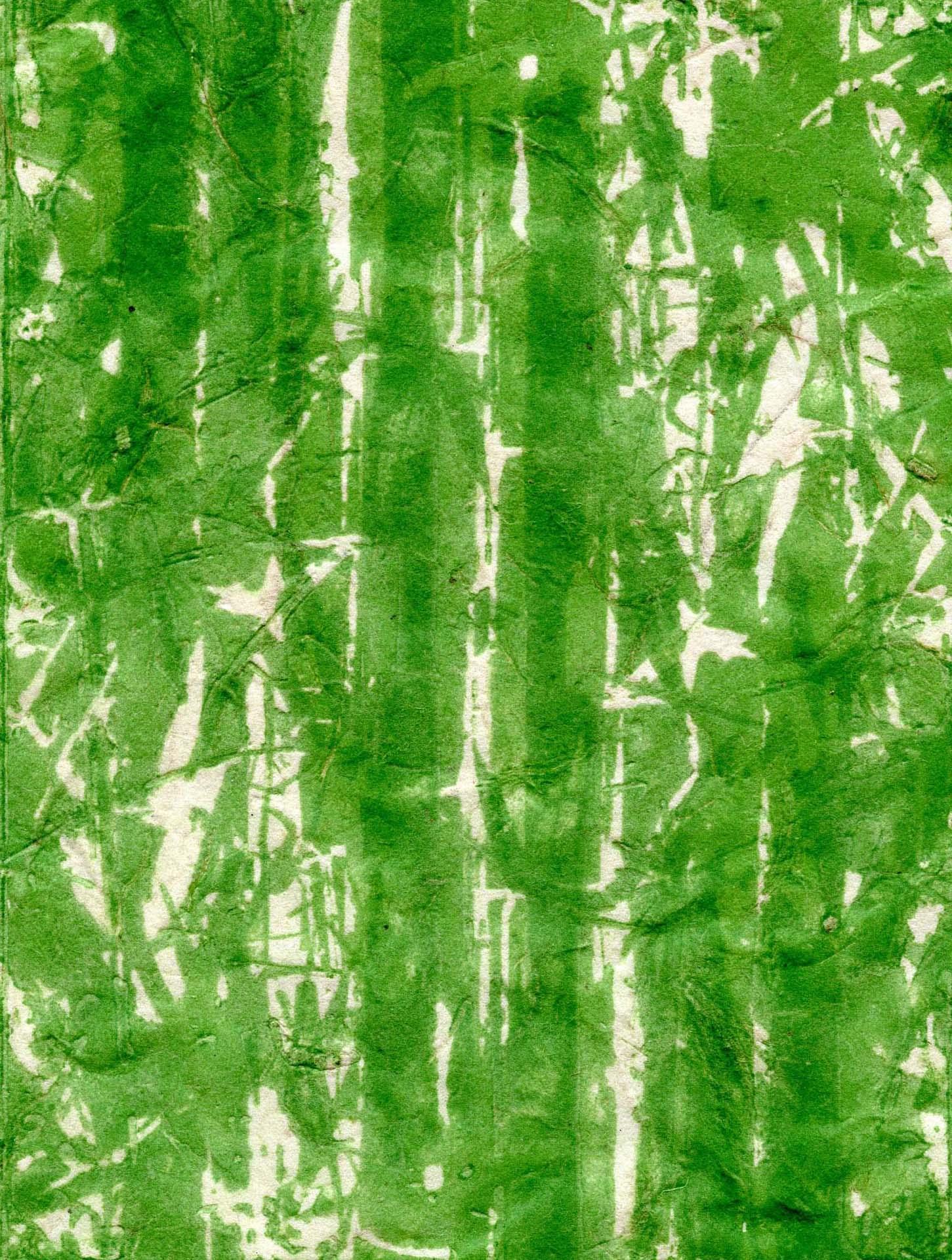 Barba Zucker, Bamboo