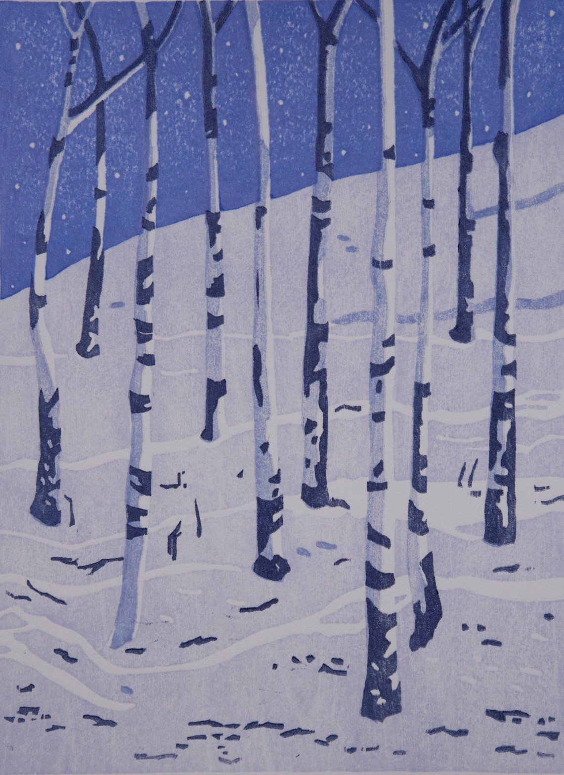 First Snow, Marcia Guetschow