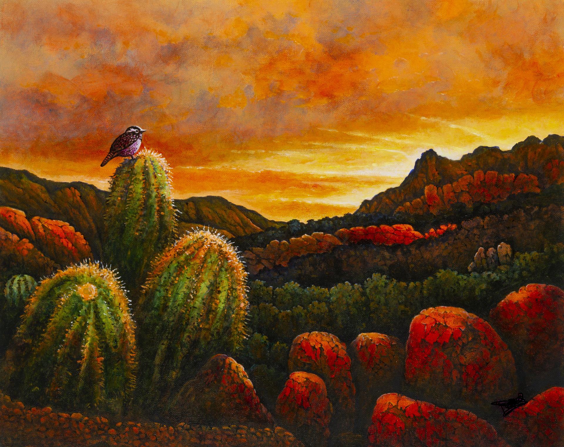 Desert Sunset, Michael Frank