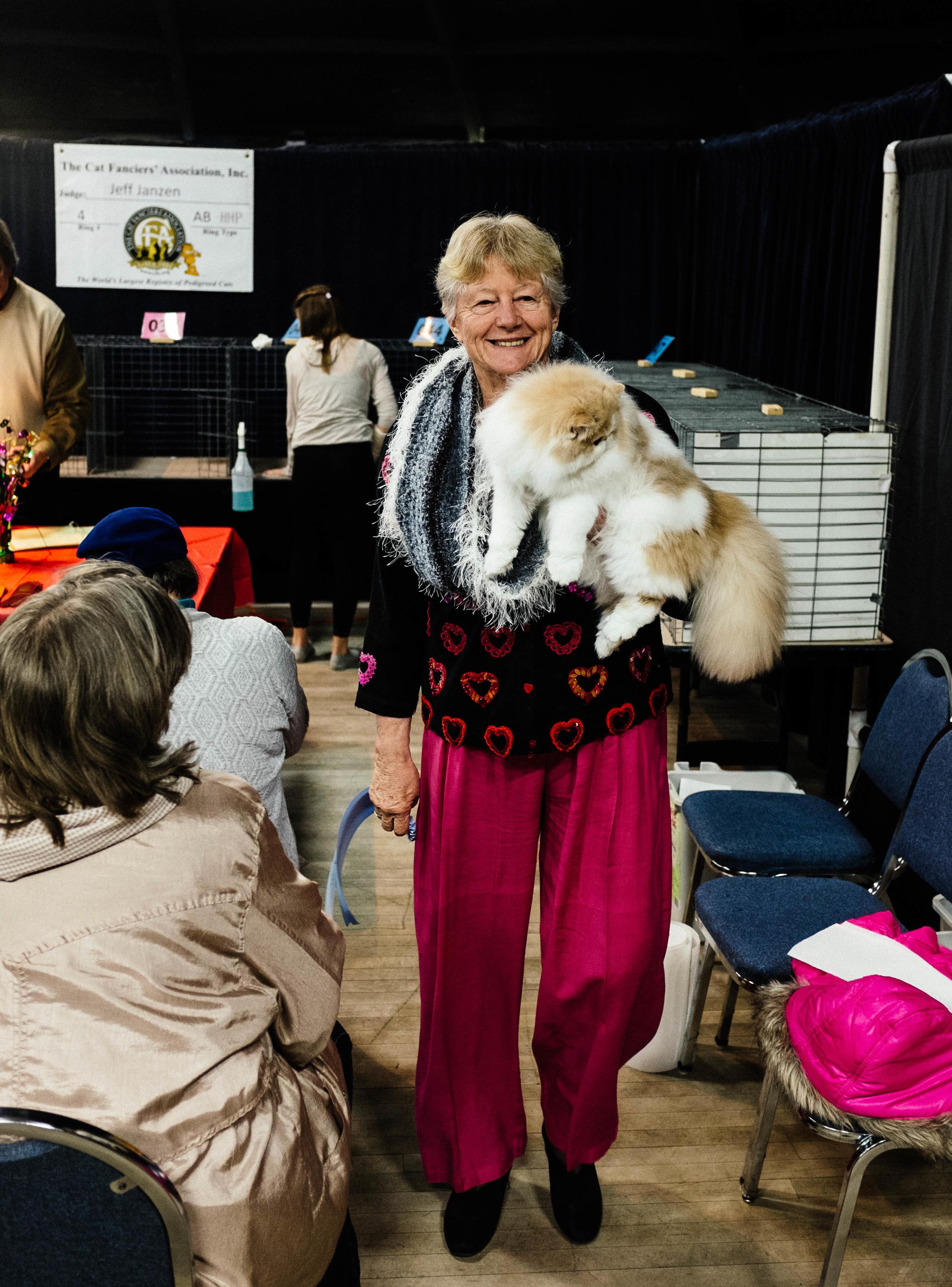 WICHITA CAT SHOW_2015-4.jpg