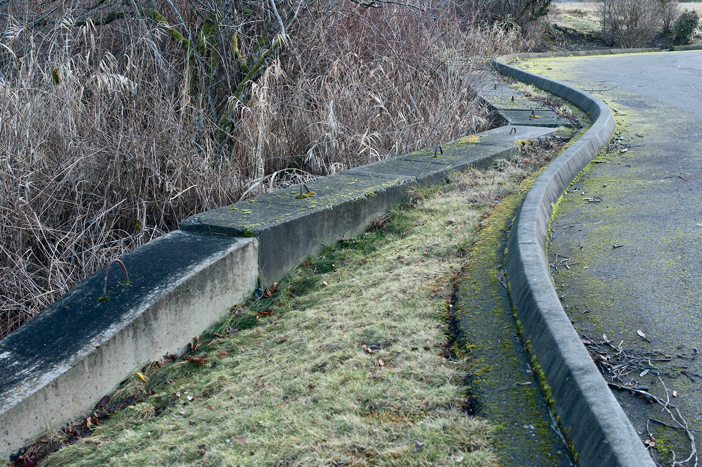 160114_concrete_curves_9362.jpg