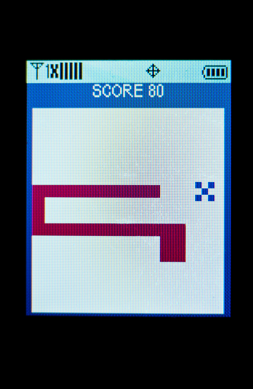 160229_snake_game_2767.jpg
