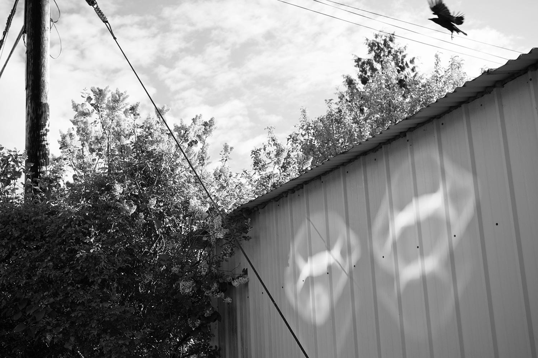 160424_those_reflections_6374.jpg