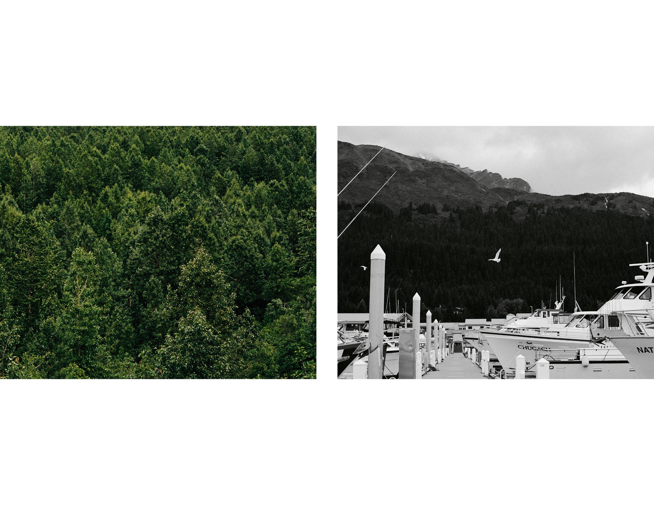 Alaska_Slide6.jpg
