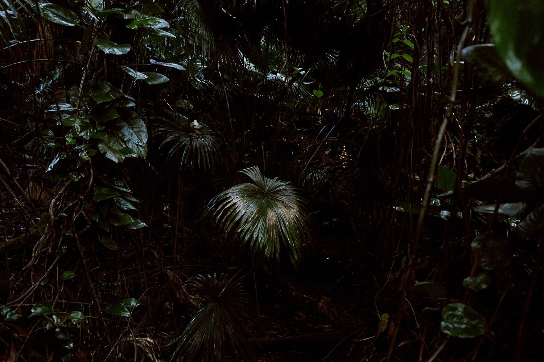 2017 Lululemon Kauai