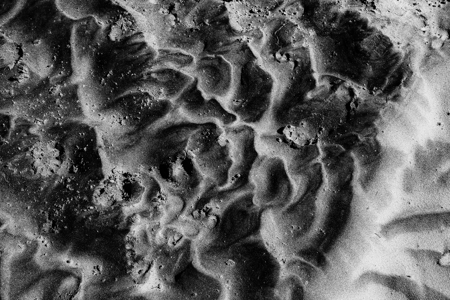 Assateague-Island-Sand-Waves-1-2017-web.png