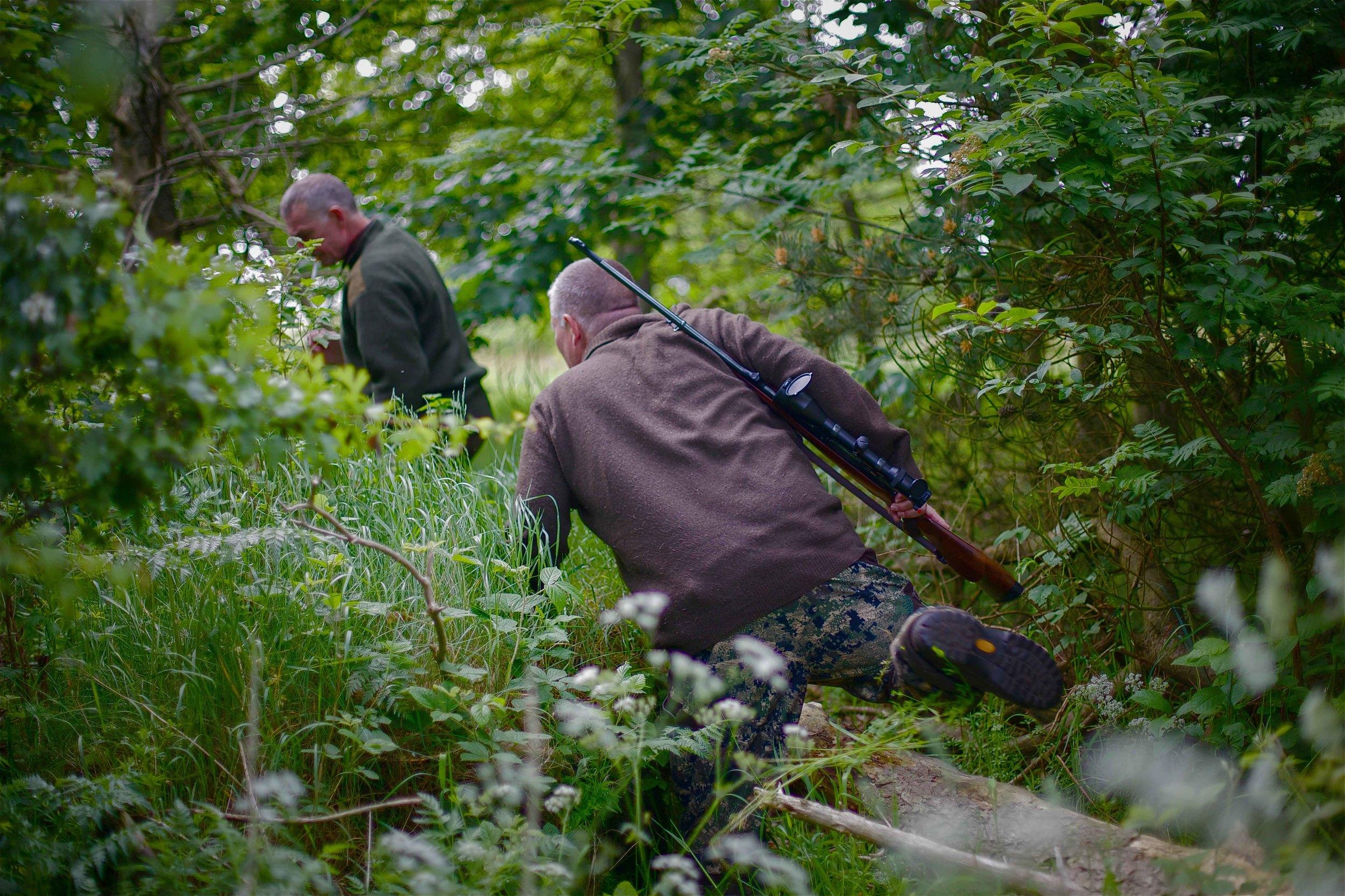 hunting-12.jpg