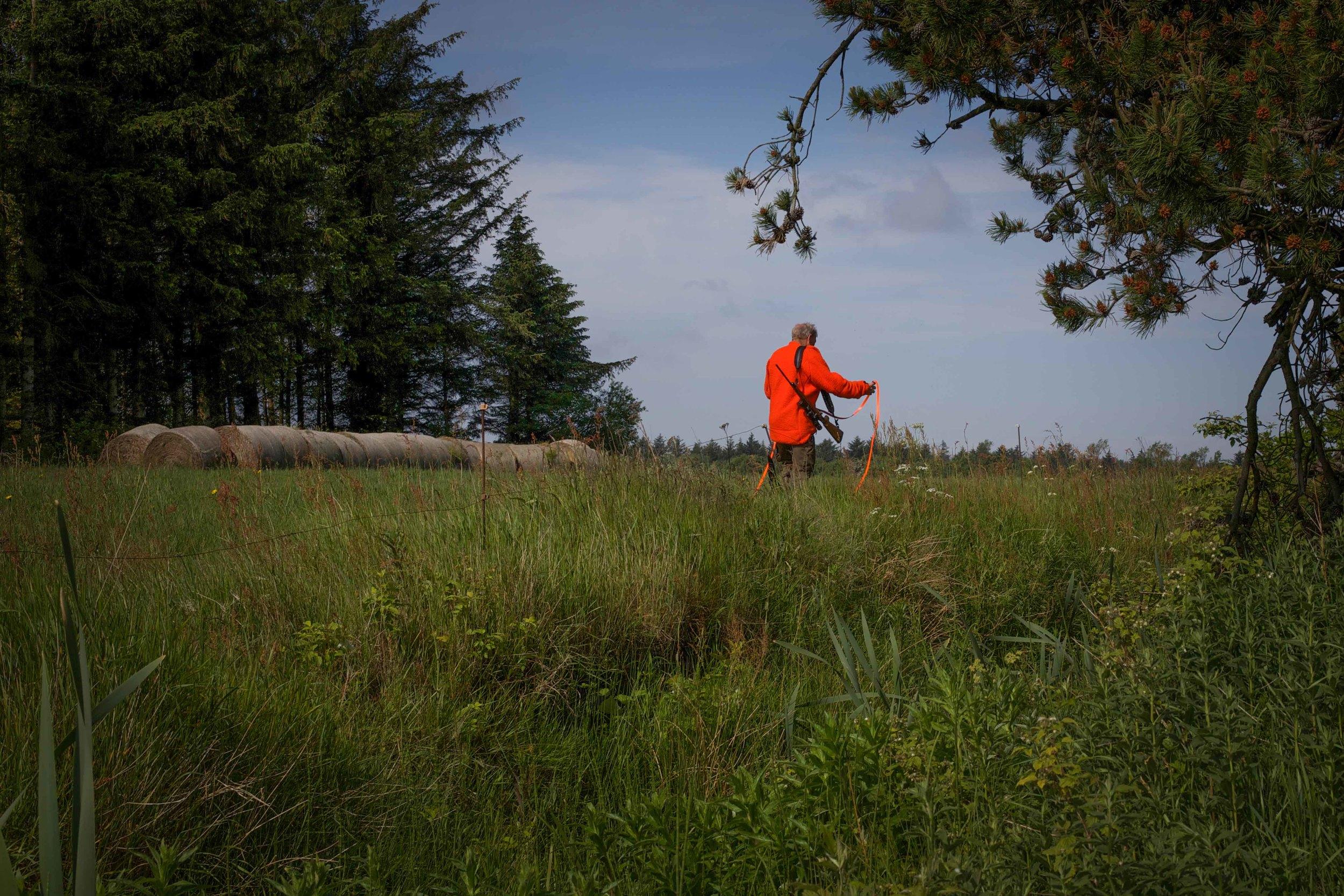 hunting-17.jpg
