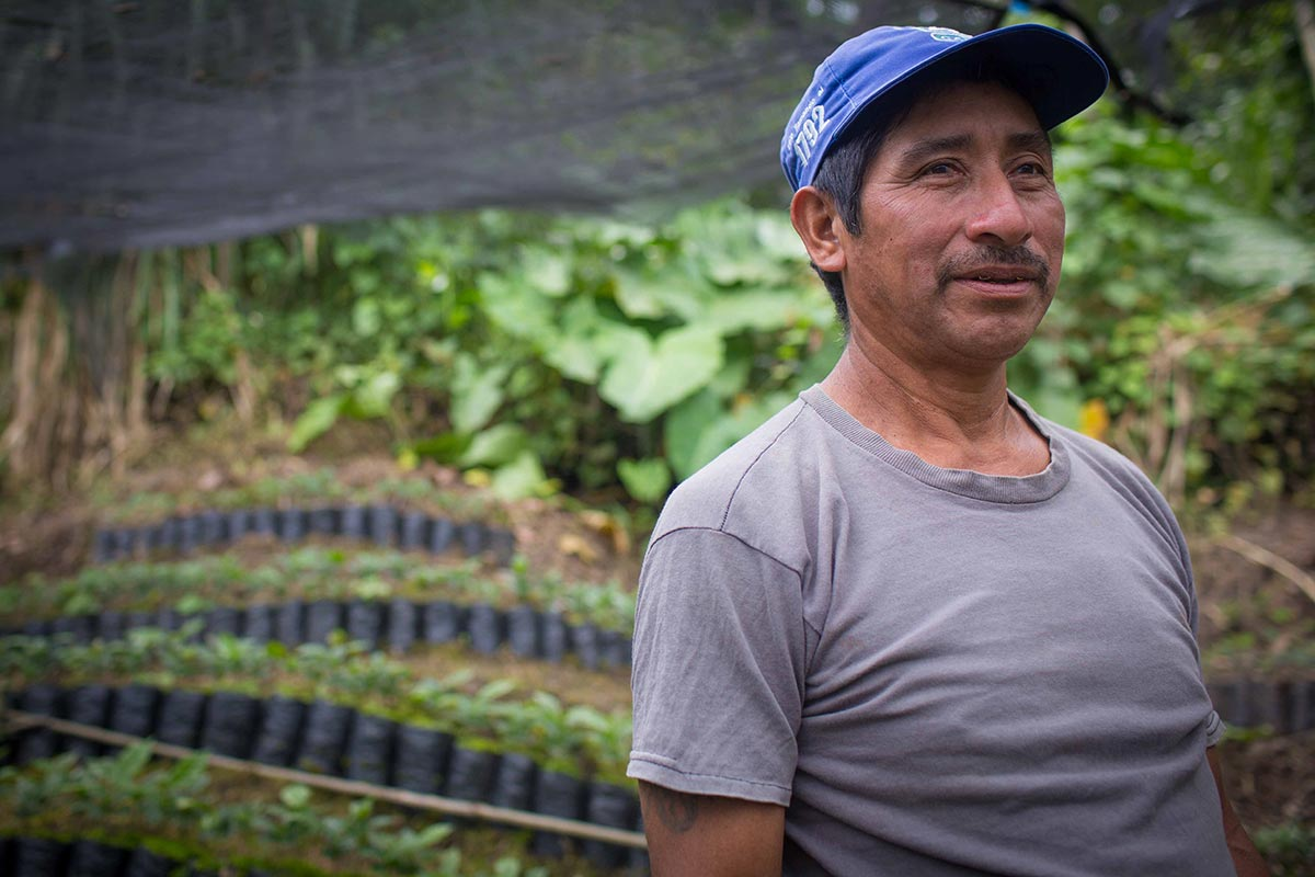 Coffee farmer at Loma Linda Organic Coffee Farm