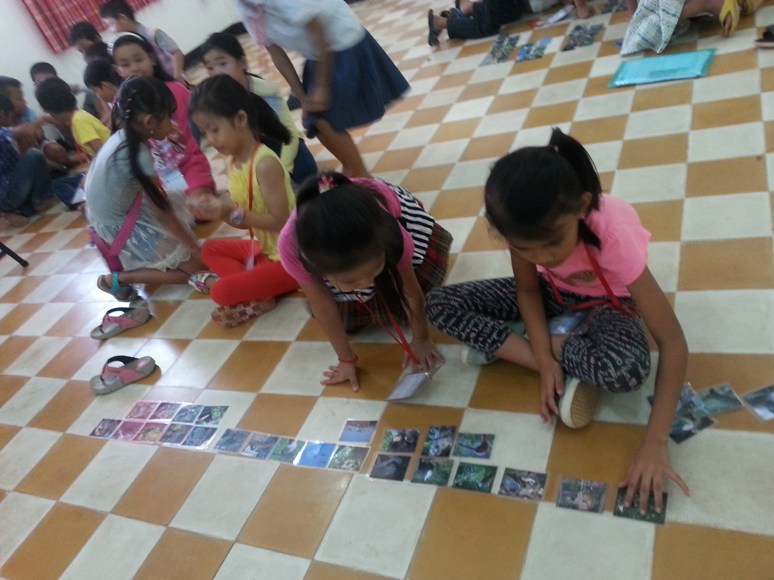 A group of your girls sort Cambodian animals into the different ICUN threat status groups.