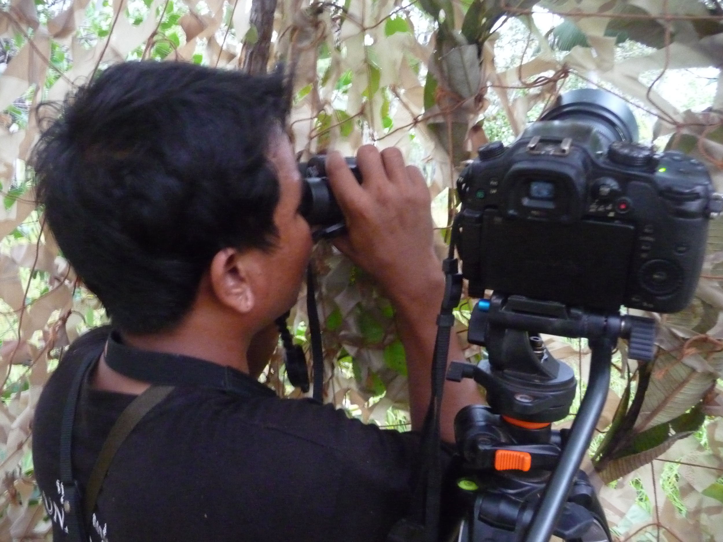 If you have high quality footage or picture of Cambodia's Wildlife, we can put them to good use.