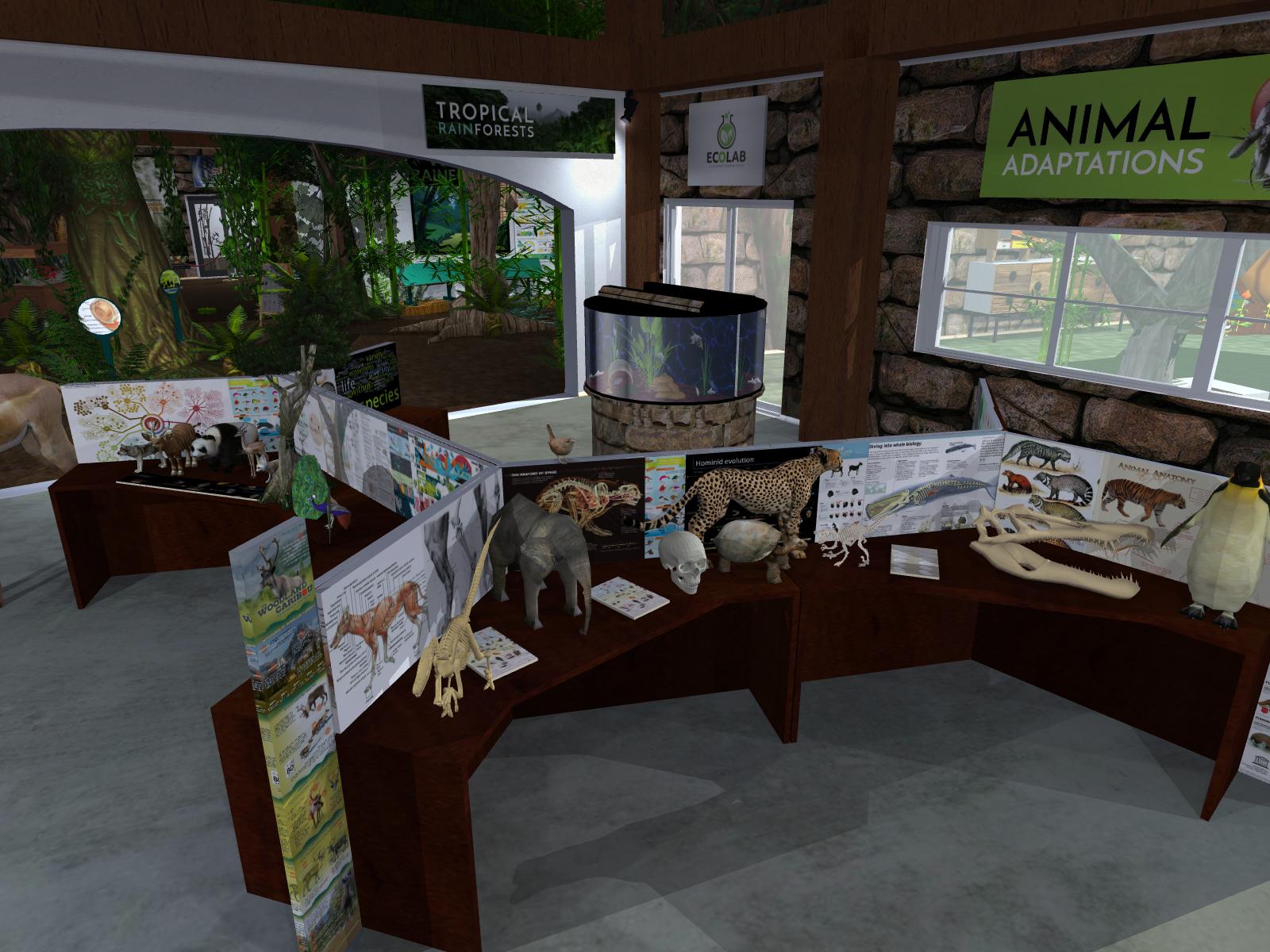 Animal Adaptations 2.png