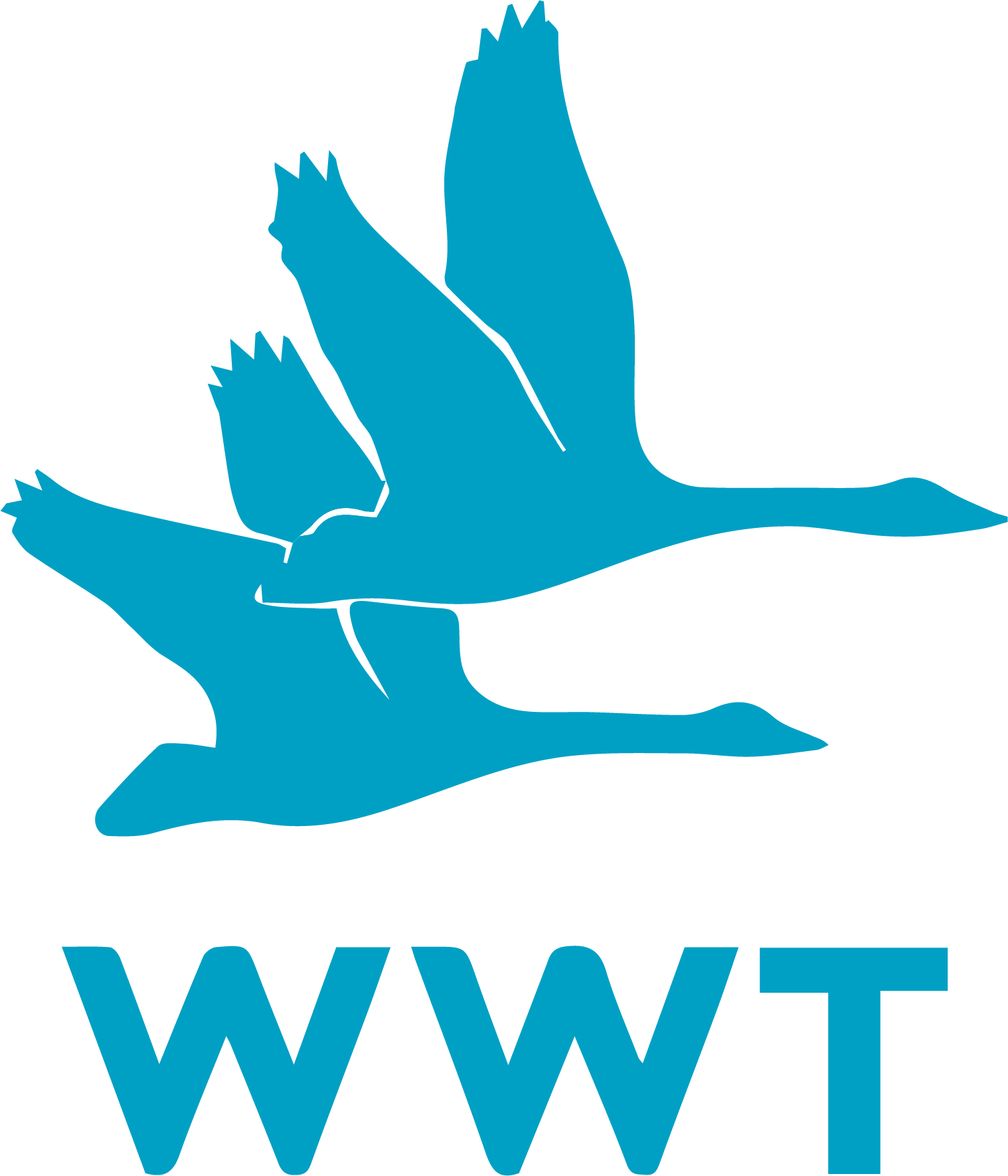 WWT Vector.png