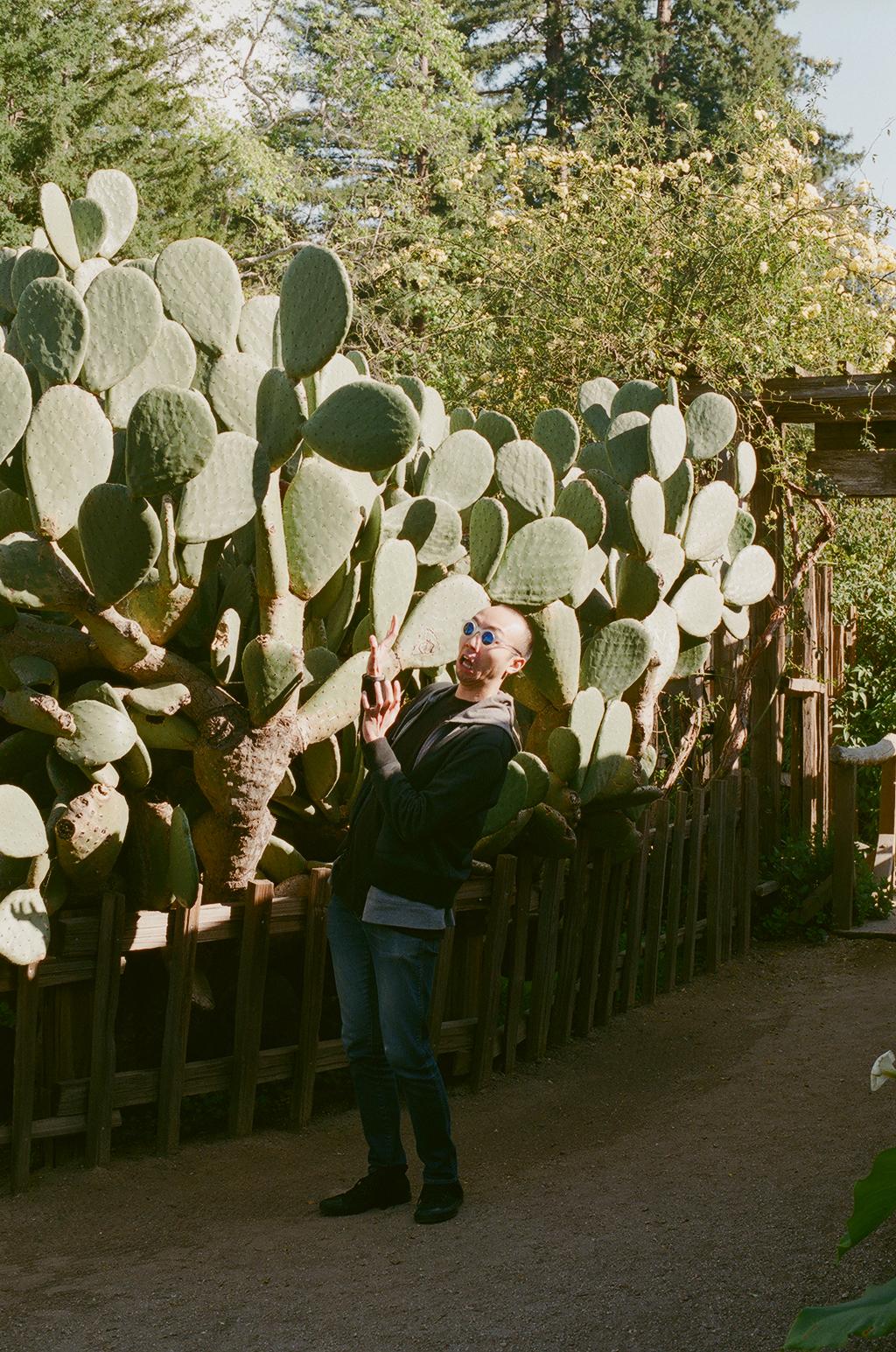 Laura Helen Winn - Xiulung x Cactus