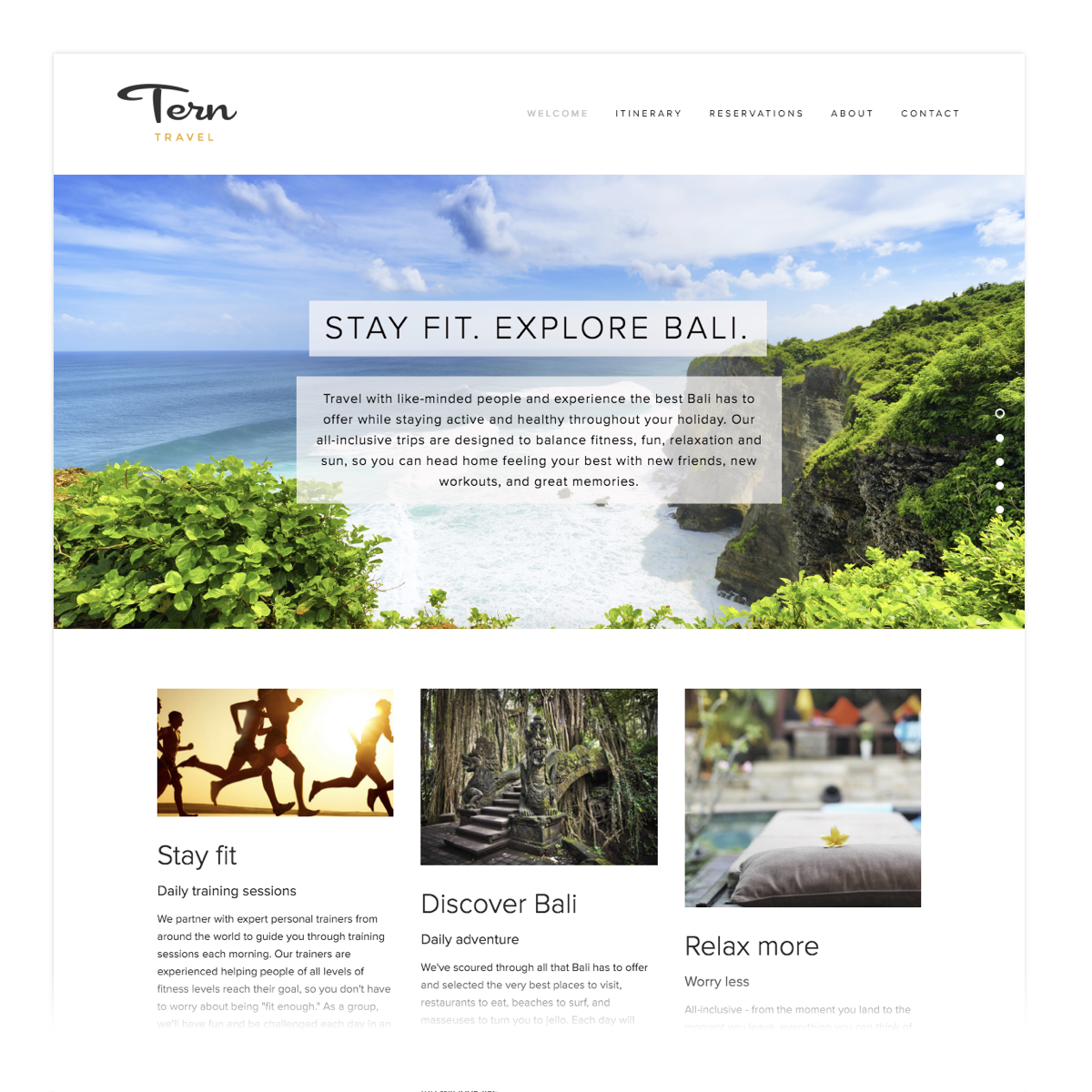 Tern Travel