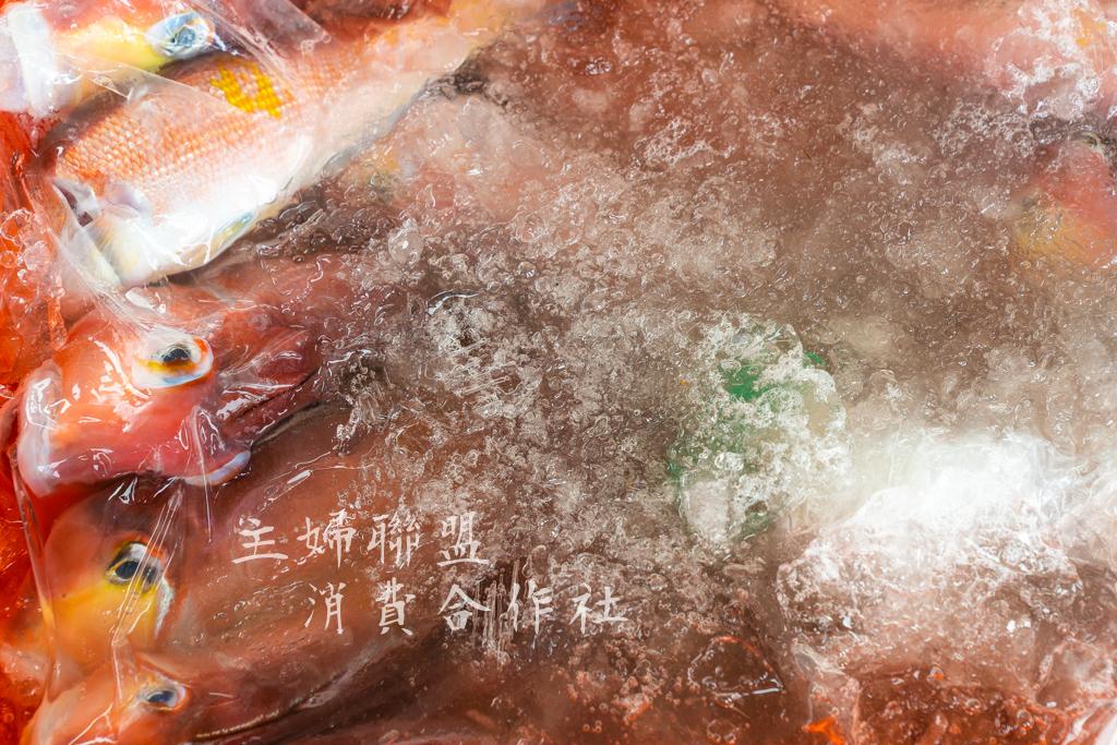 - 冰塊只覆蓋在外層透明袋
