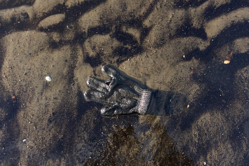 Glove  2 1.jpg
