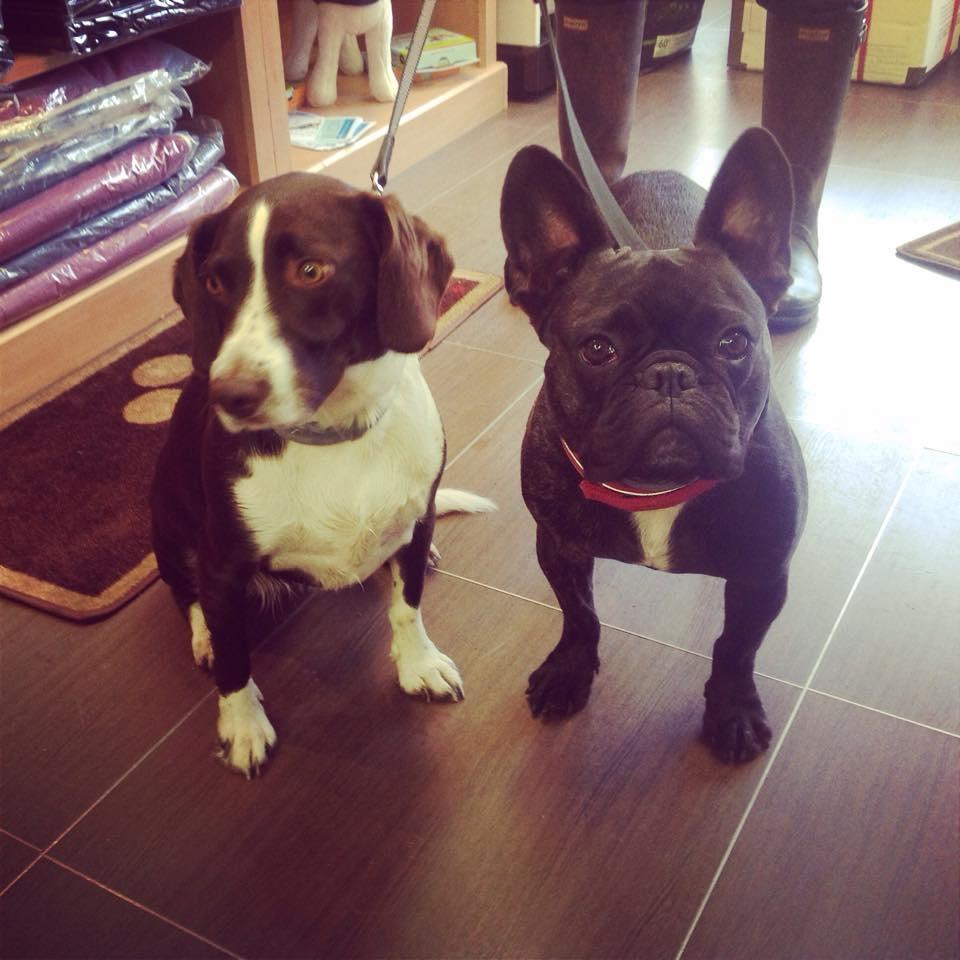 Lucy & Wilbur5.jpg