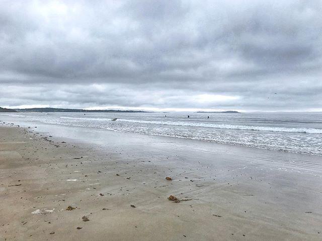 Maine mornings ☕️