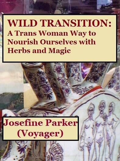 wild transition cover.jpg