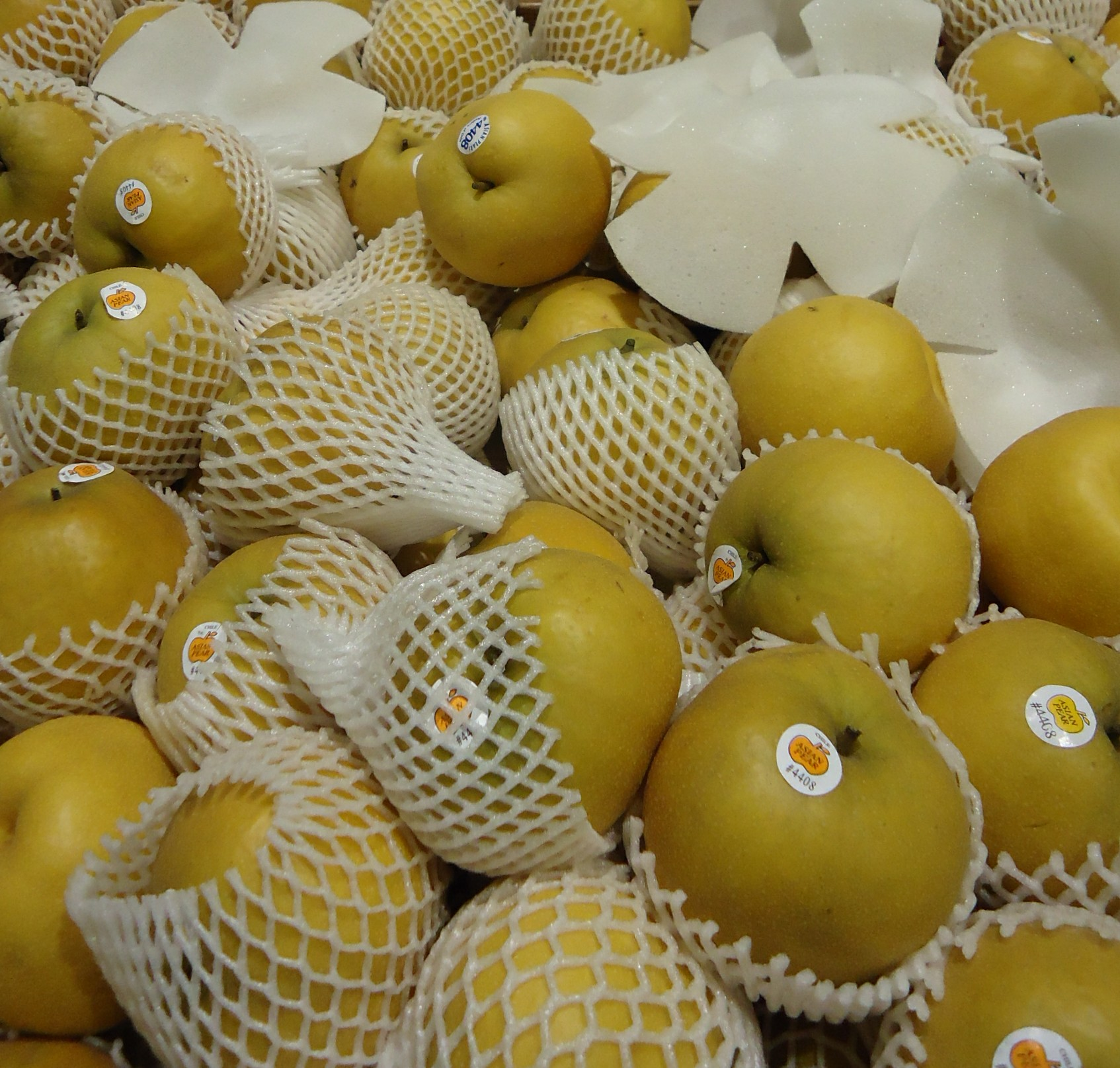 Asian pears, imported from China, as typically sold in American supermarkets