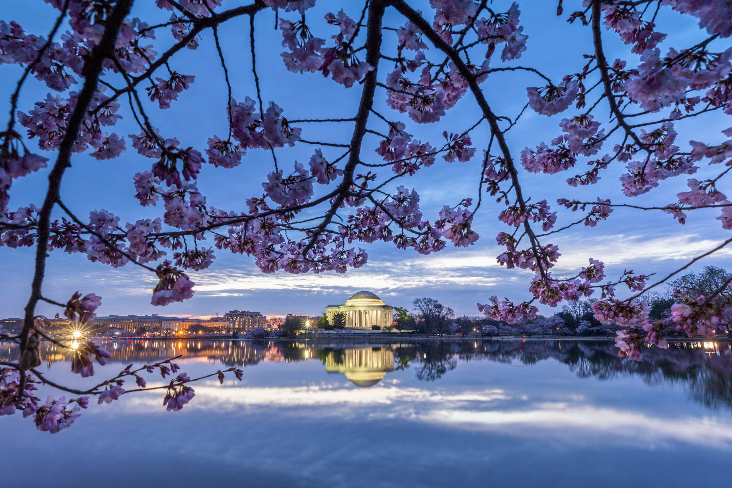 Blossom Sunrise. Washington, D.C. (Mar. 2019)
