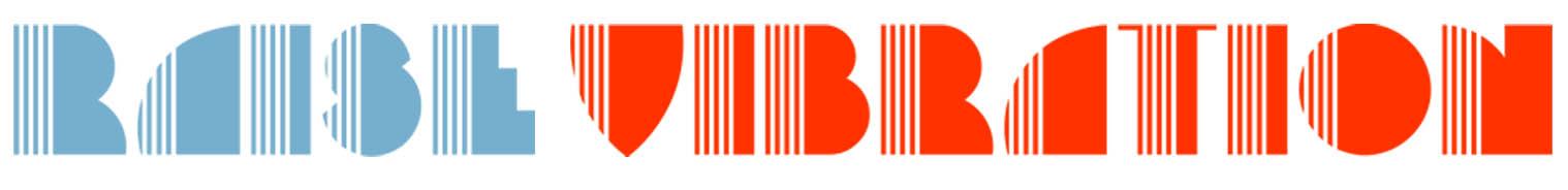 raise vibration logo color.jpg