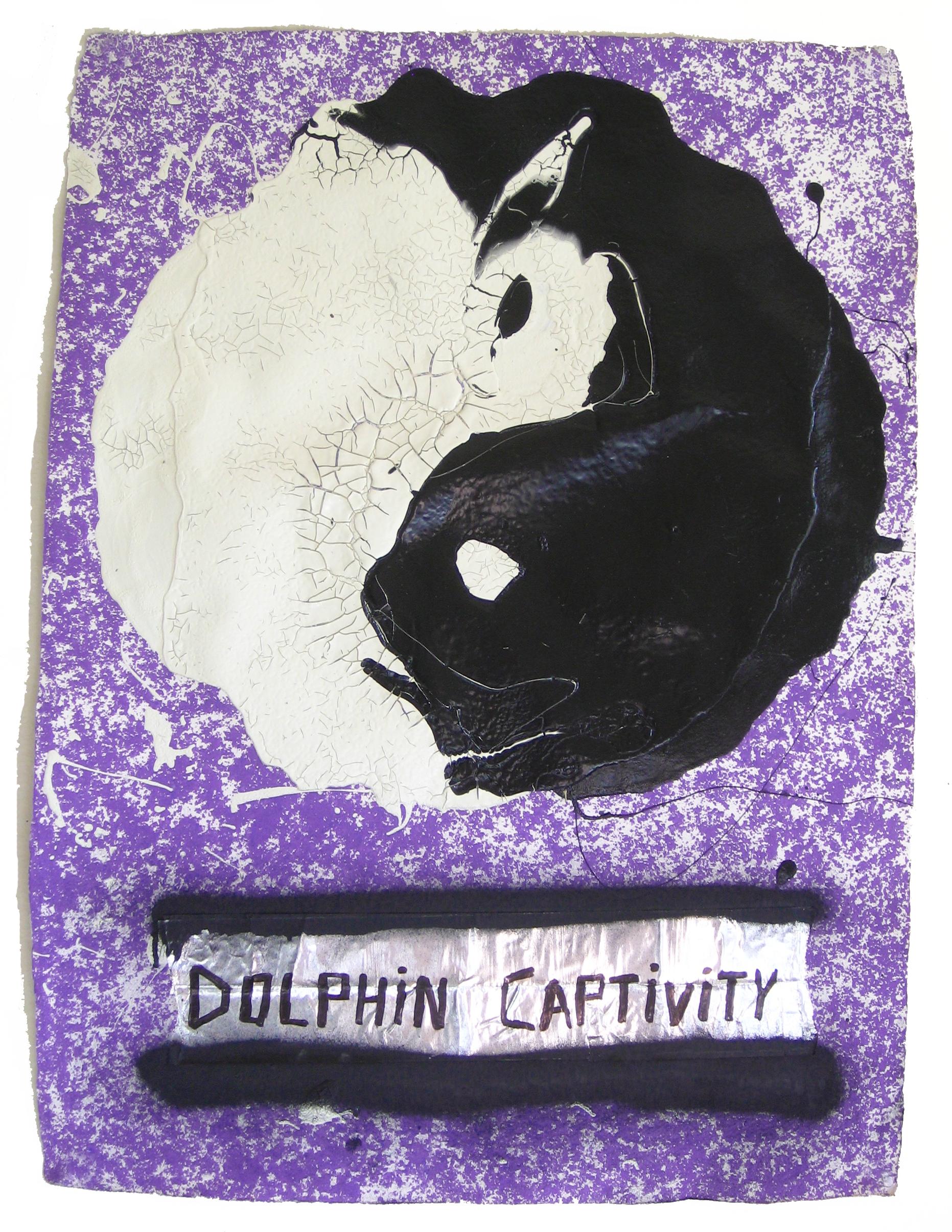 Dolphin Captivity