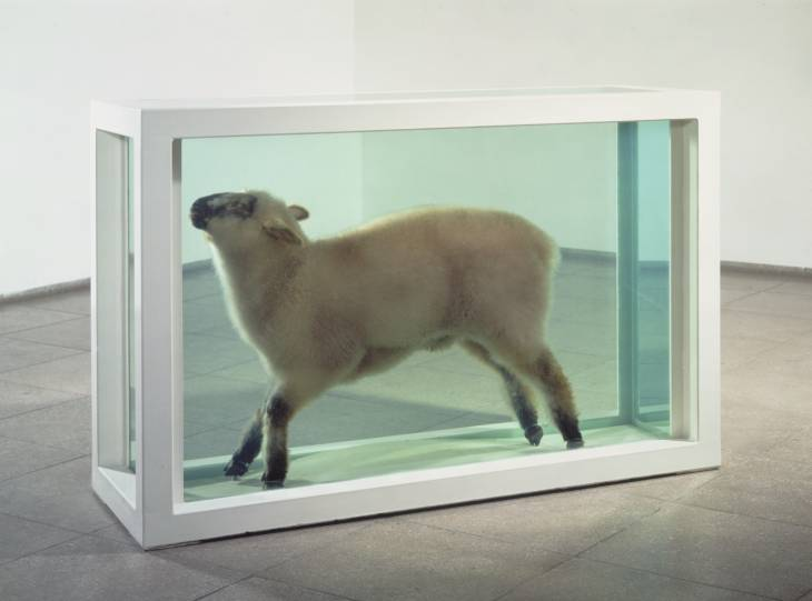 """""""Away from the Flock"""" a contemporary art piece by British artist, Damien Hirst; one of the humorous tangents mentioned by Professor McFee when describing art."""