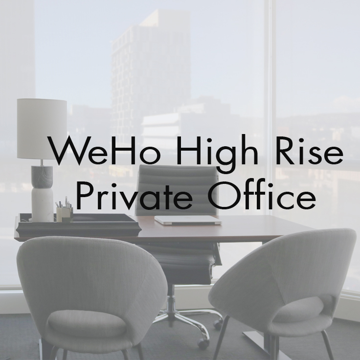 Private Office  West Hollywood, CA   Scope : Interior Design and custom curation of furniture and artwork. Project management, purchasing, and styling.