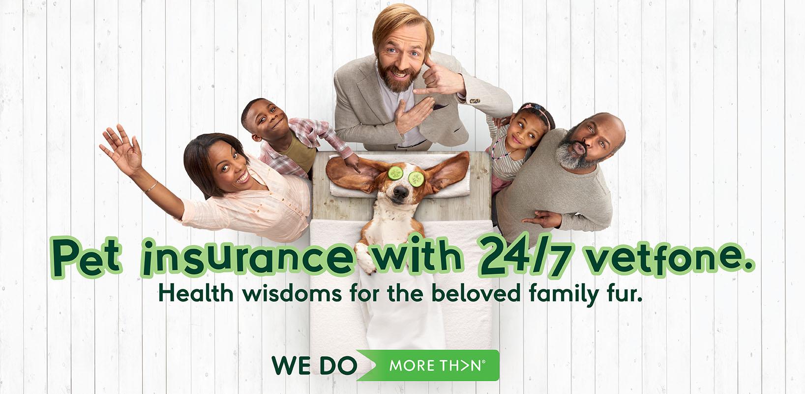 More Than Pet Insurance