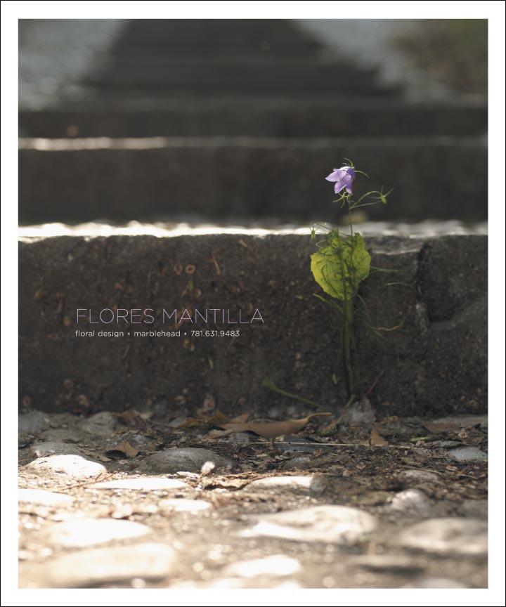 FLORES.MANTILLA.BC.AD.07 copy.jpg